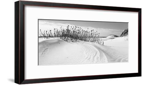 Serebe Shorline-Eve Turek-Framed Art Print