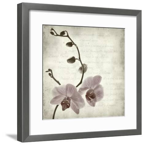 Retro Orchid--Framed Art Print