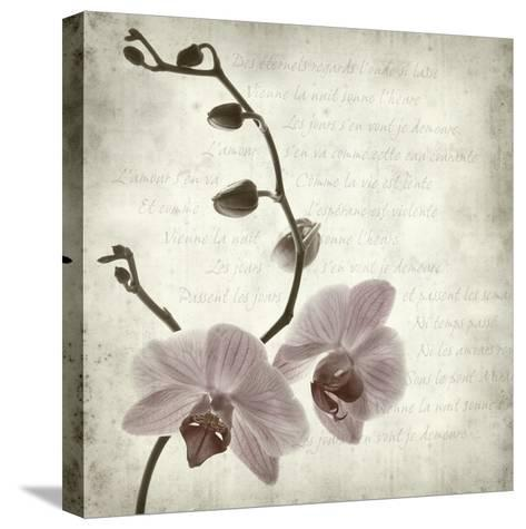 Retro Orchid--Stretched Canvas Print