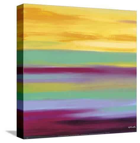Prairie Abstract 6-Mary Johnston-Stretched Canvas Print