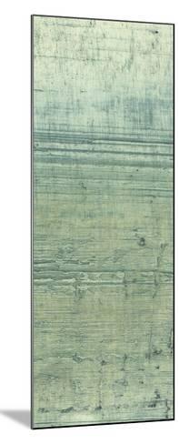 Boardwalk V-Grant Louwagie-Mounted Art Print