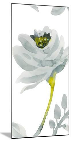 Verdant III-Sandra Jacobs-Mounted Giclee Print