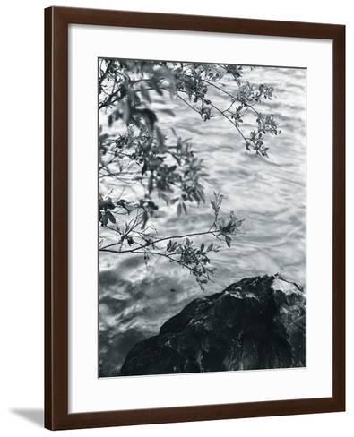 Ripples-Andrew Geiger-Framed Art Print