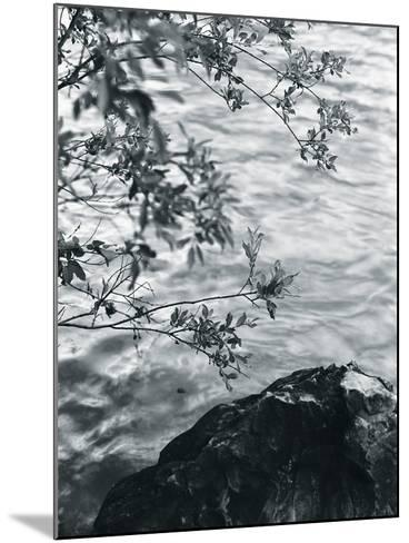 Ripples-Andrew Geiger-Mounted Giclee Print