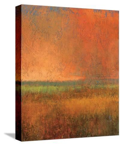 Changing Skies 2-Jeannie Sellmer-Stretched Canvas Print