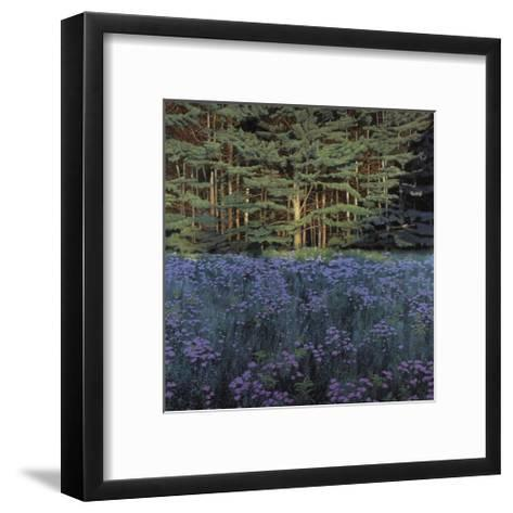 Shadowed Meadow Sunlit Pines-Jon R^ Friedman-Framed Art Print