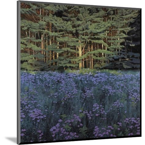 Shadowed Meadow Sunlit Pines-Jon R^ Friedman-Mounted Giclee Print