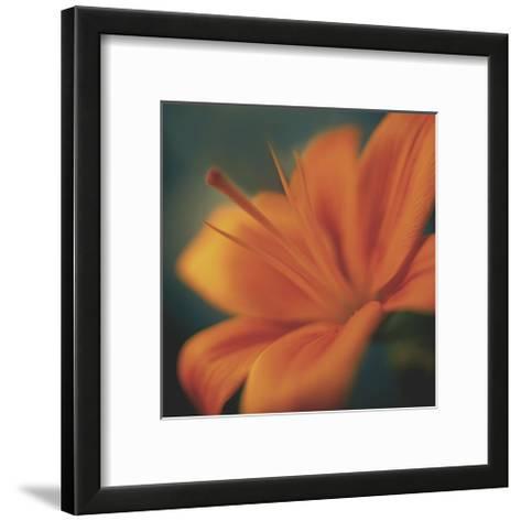 Orange on Turquoise-Jane Ann Butler-Framed Art Print