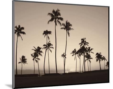 Platinum Palms II-Michael Neubauer-Mounted Giclee Print
