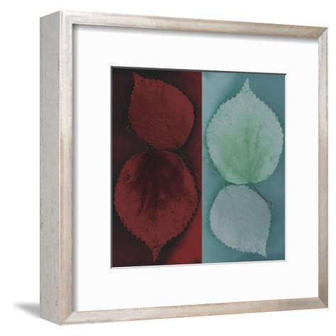 Sycamore-Jane Ann Butler-Framed Art Print