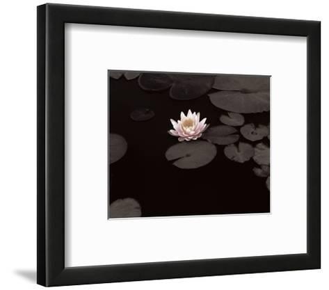 Meandering Lily II--Framed Art Print