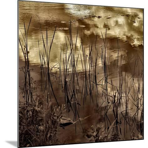 Infrared Pond 6-Jean-Fran?ois Dupuis-Mounted Art Print