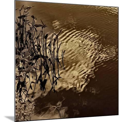 Infrared Pond 8-Jean-Fran?ois Dupuis-Mounted Art Print