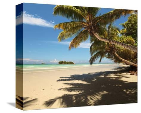Anse Volbert beach, Praslin Island, Seychelles--Stretched Canvas Print