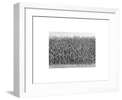 Maisfeld-Michael Rausch-Framed Art Print