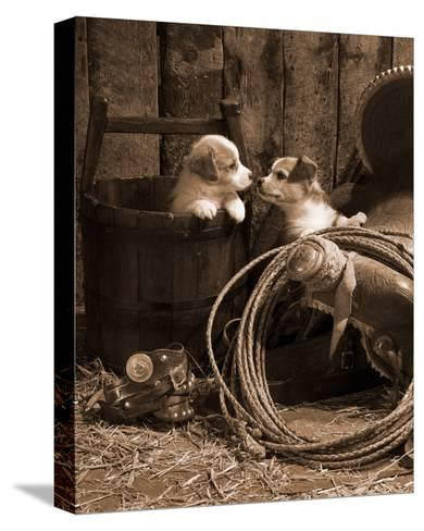 How Bout a Kiss Sepia-Robert Dawson-Stretched Canvas Print