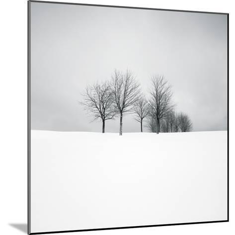 Wintertide-Hakan Strand-Mounted Giclee Print
