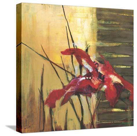 Golden Space II-Terri Burris-Stretched Canvas Print