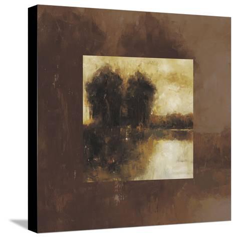 Metamorphis II--Stretched Canvas Print