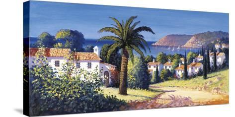 Palm Trail-David Short-Stretched Canvas Print