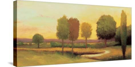 Meadow Breeze-William McCarthy-Stretched Canvas Print