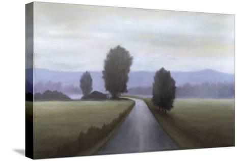 Around the Bend-Bill Turner-Stretched Canvas Print