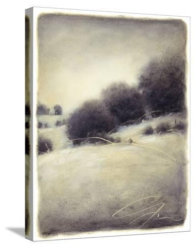 Hill Side III-Gretchen Hess-Stretched Canvas Print