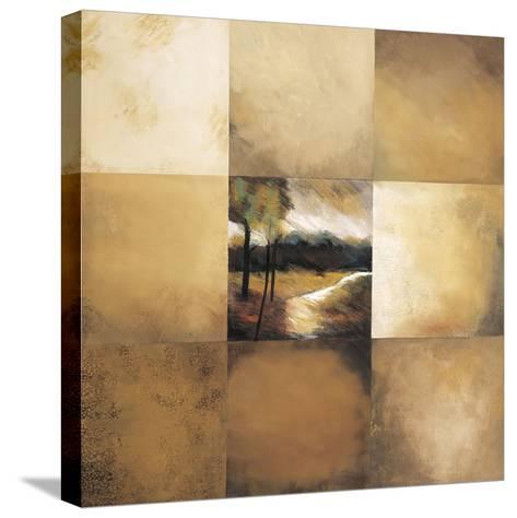 Pathway-Zipi Kammar-Stretched Canvas Print