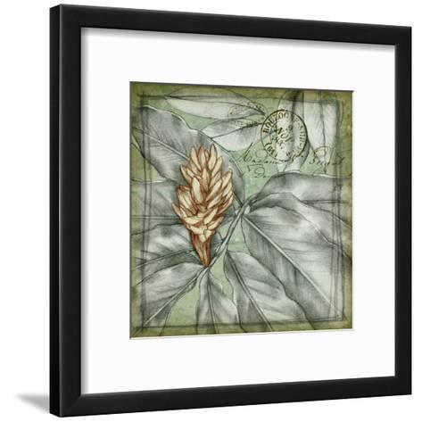 Postmark Tropicals II-Jennifer Goldberger-Framed Art Print