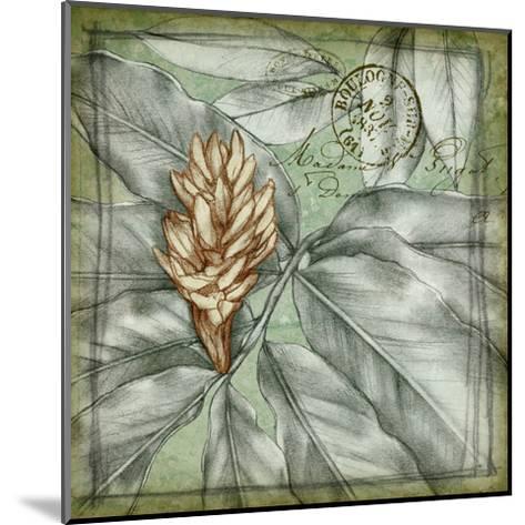 Postmark Tropicals II-Jennifer Goldberger-Mounted Art Print