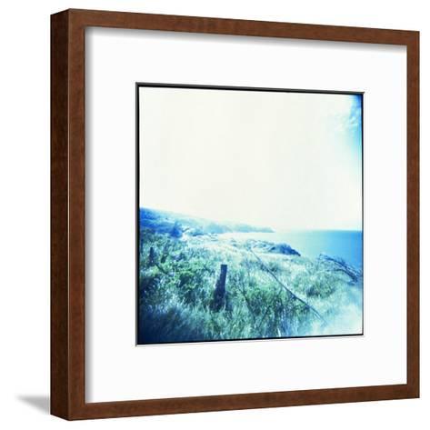 Holga Hawaii III-Jason Johnson-Framed Art Print