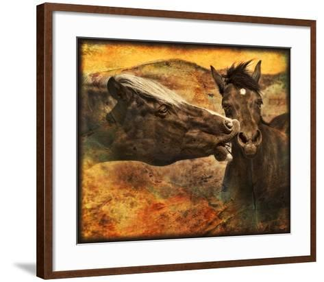 Kissing Horses I-David Drost-Framed Art Print