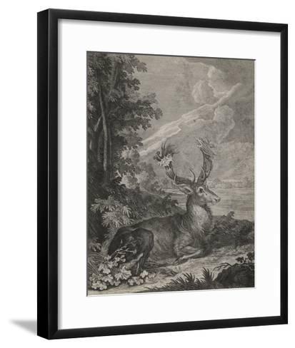 Woodland Deer III-Ridinger-Framed Art Print