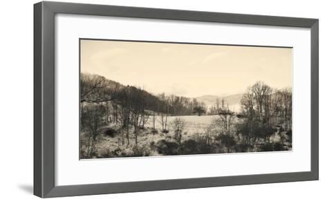 Foggy Mountain II-Alicia Ludwig-Framed Art Print
