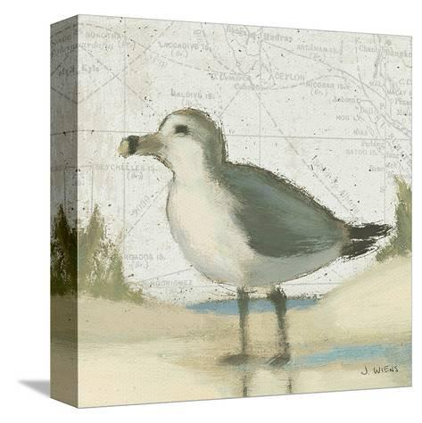 Beach Bird II-James Wiens-Stretched Canvas Print