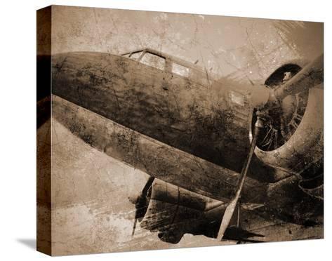 Antique Plane I--Stretched Canvas Print