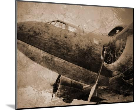 Antique Plane I--Mounted Art Print