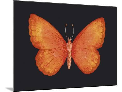 Summer Butterfly V-Sophie Golaz-Mounted Giclee Print