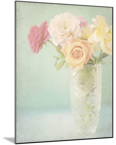 Pastel Roses-Shana Rae-Mounted Giclee Print