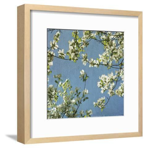 May Fourth-Donna Geissler-Framed Art Print