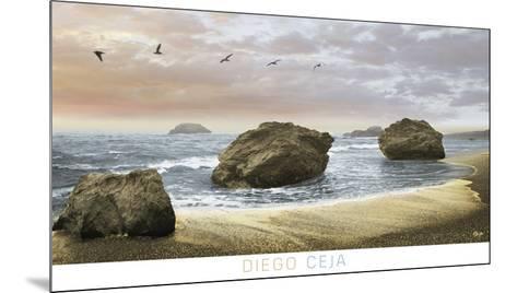 Bodega Beach 2-Diego Ceja-Mounted Art Print