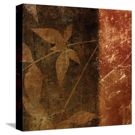 Spice Leaves 1B-Kristin Emery-Stretched Canvas Print