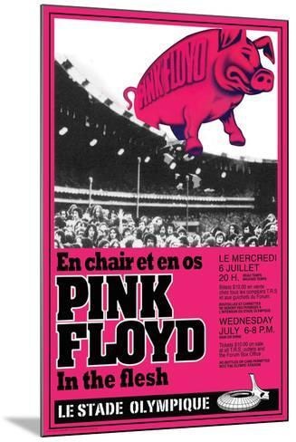 Pink Floyd Concert--Mounted Poster