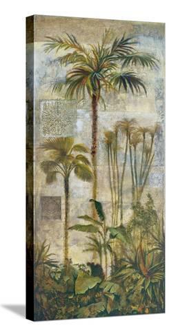 Enchanted Oasis I-Douglas-Stretched Canvas Print
