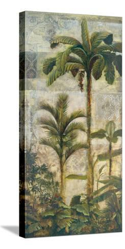 Enchanted Oasis II-Douglas-Stretched Canvas Print