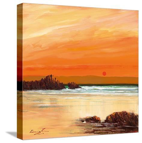 Donegal-William Cunningham-Stretched Canvas Print