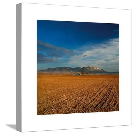 Spanish Landscape I-Bill Philip-Stretched Canvas Print