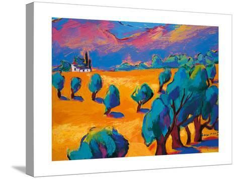Hot Summer's Day-Gerry Baptist-Stretched Canvas Print