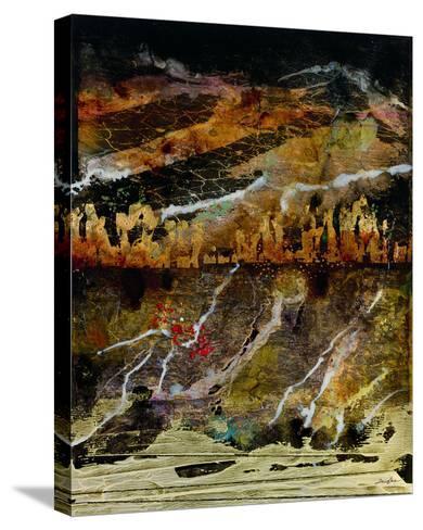 Hemisphere X-Douglas-Stretched Canvas Print