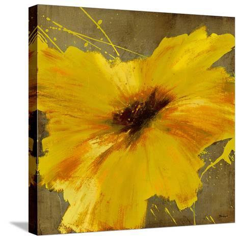 Colourful Flowers II-Bridges-Stretched Canvas Print